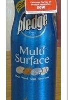 Product of the Year Pledge Multi Surface